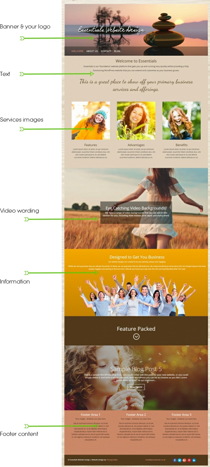 Essentials website design for therapists layout options