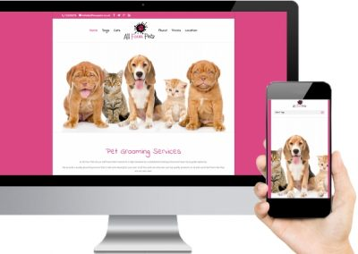 All Four Pets Website Design